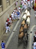 Los toros de Joselito debutan con un rápido y limpio encierro