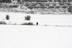Ola de frío: la Comunidad Valenciana se llena de nieve