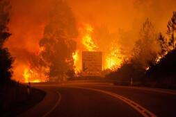 Trágico incendio en Portugal