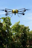Drones expertos en vino