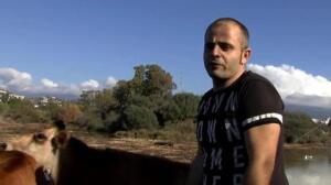 Centenares de animales rescatados de las protectoras inundadas en Málaga