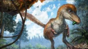 Descubren en China la primera piedra de ámbar con material genético de un dinosaurio