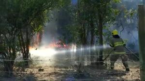Chile lucha contra el fuego que ha arrasado ya más de 190.000 hectáreas en siete regiones