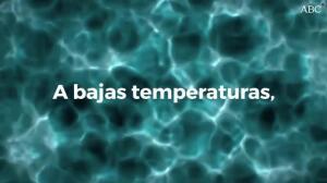 El agua no es un líquido sino dos