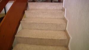 Unas escaleras separan a un adolescente con parálisis cerebral de su vida normal