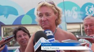 tortuga-cristina-oceanografic